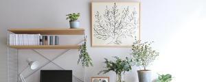 《壁面》を上手に活用しよう!こだわりのお部屋を作るワンアイテムをご紹介します。