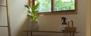 【動画】<観葉植物のお手入れ> 鉢を植え替えしよう。