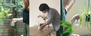 【僕たちの愛用品】京都店スタッフが自宅で育てている植物たちをご紹介♪