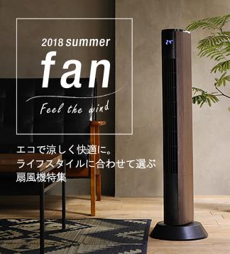 2019 summer fan